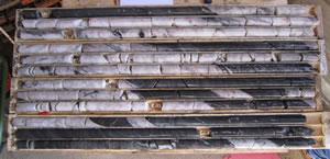 Mooseland drill core
