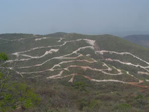 Drill roads on the Las Calabasas zone at Cerro Jumil