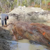 Trenching Results Again Expand Globex' Francoeur/Arntfield Gold Property Potential post image