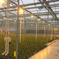 Tecogen Wins First Non-Cannabis Deal In Agriculture Space post image