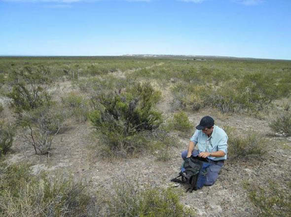 Blue Sky Uranium Ivana deposit vegetation