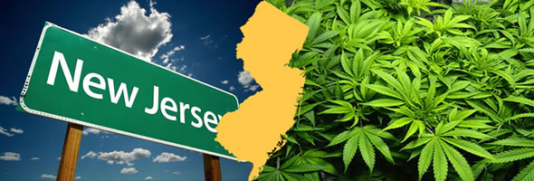 Chemistree Technology New Jersey Cannabis-Markt